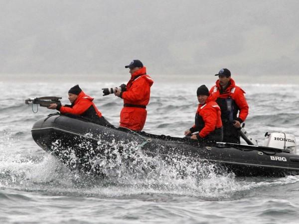 Tot în scopuri științifice, Putin a nimerit, de data aceasta dintr-o arbaletă, o balenă gri, aflată pe cale de dispariție.