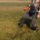 (VIDEO) Fenomen ciudat în Rusia; Încălzirea globală este de vină
