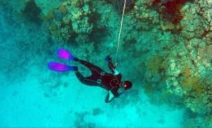 Oceanele sunt poluate cu particule invizibile de plastic