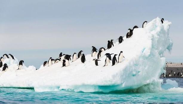 Experţii avertizează: există ape curgătoare pe continentul Antarctica ce pun în pericol calota glaciară