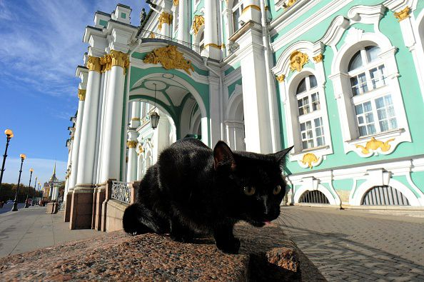 RUSSIA-CULTURE-HISTORY-ARTS-ANIMAL-MUSEUM