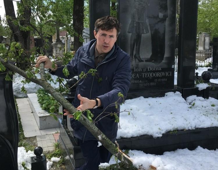 """Mare atenție pentru cei care pleacă la cimitir! Dorin Chirtoacă: """"Este pericol de a cădea crengi"""""""