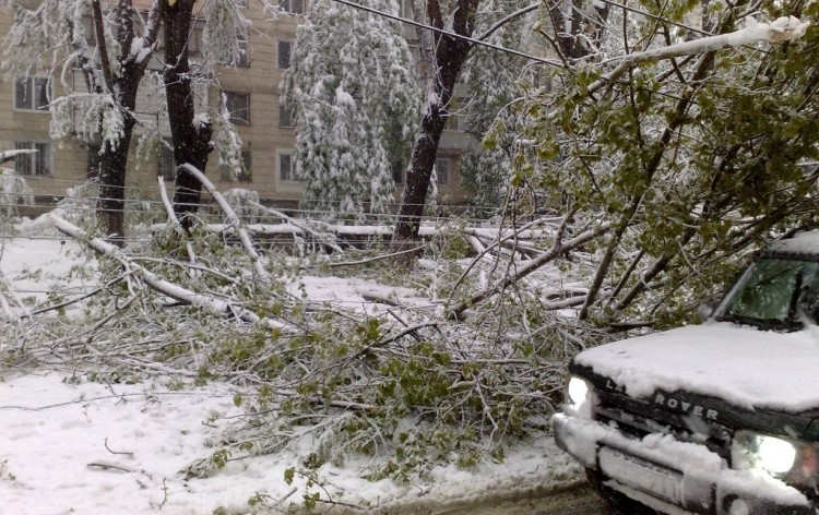 Ora 11.00 în Chișinău: 3 mii de copaci doborâți, străzi blocate și transport public nefuncțional