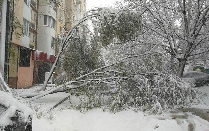 (FOTO) Unii se lamentează, alții acționează. Locuitorii capitalei, cu lopețile în mâini, își curăță ogrăzile de zăpadă