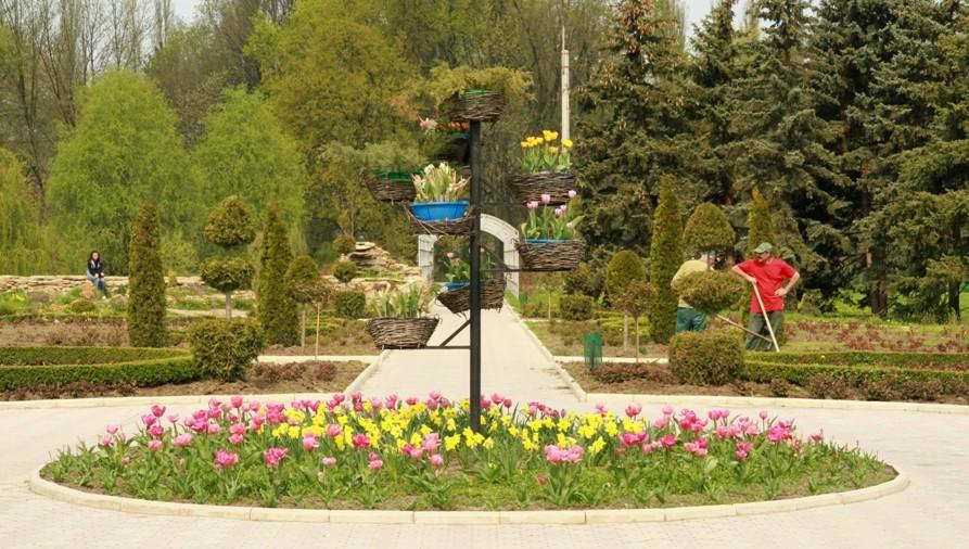 Dezastru ecologic de proporții: Parcul Dendariu din Chișinău, distrus aproape în totalitate