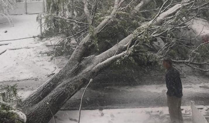 108 piloni de electricitate au fost doborâți în urma ninsorilor. Primăria: o situație fără precedent
