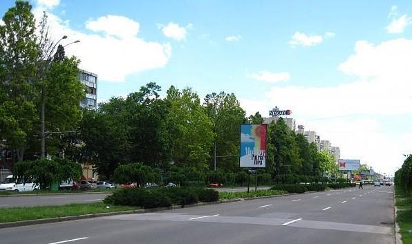 Un angajat al unei școli din Chișinău a decedat, după ce un copac a căzut peste el