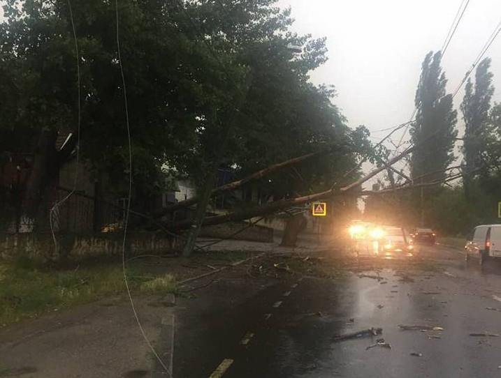 (FOTO) Atenție, șoferi! Străzile din Capitală unde copacii căzuți au blocat traficul