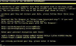 Atacul cibernetic din Ucraina se răspândeşte în întreaga lume, afectând companii din Rusia, Danemarca, Spania