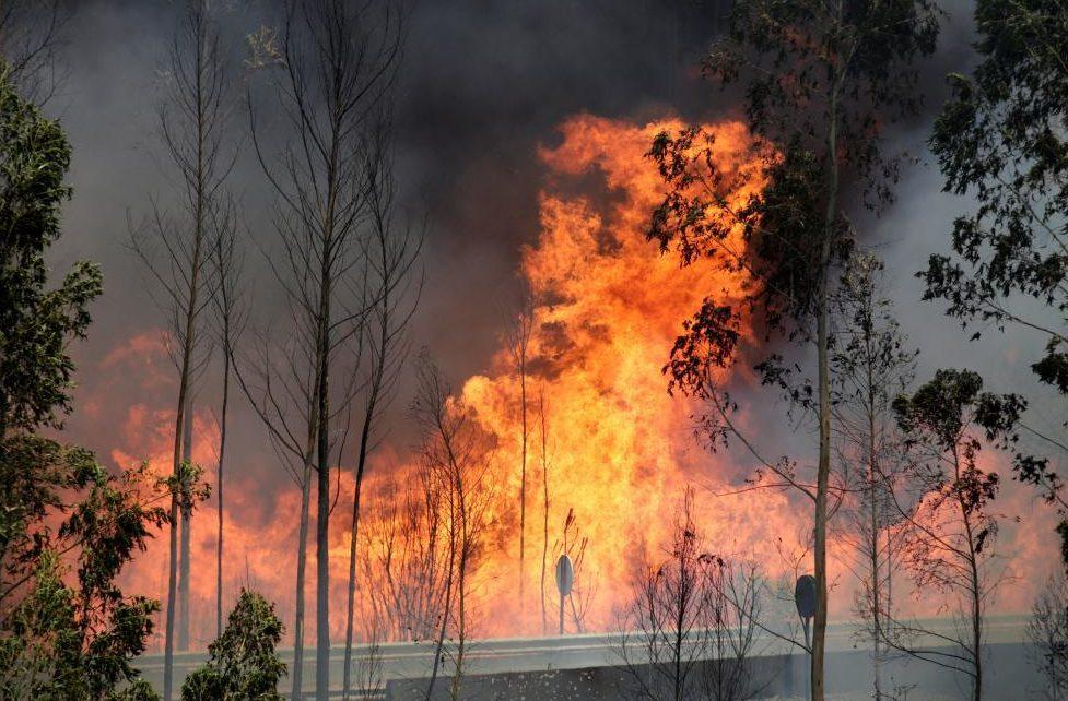Incendii majore într-o țară europeană: Peste 2 mii de pompieri încercă să țină flăcările sub control