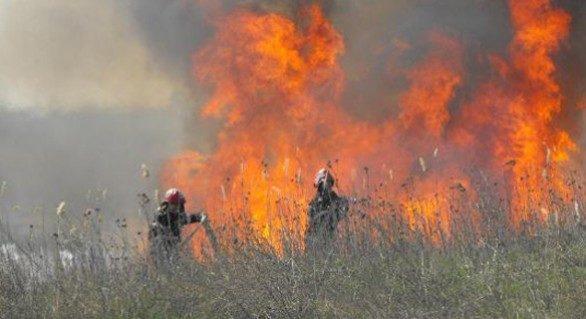 Pompierii au lichidat mai multe incendii de vegetație în Trușeni