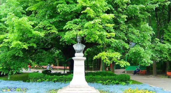 Puieți din teiul lui Eminescu de la Iaşi vor ajunge la Viena, Berlin, Cernăuți și București