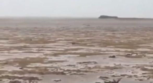 (VIDEO) A dispărut oceanul. Fenomenul produs de forţa uraganului Irma, în Bahamas. Explicaţiile specialiştilor