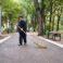 Guvernul va obliga unele categorii de șomeri să muncească în folosul comunității