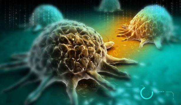 """Microsoft doreşte să utilizeze inteligenţa artificială pentru a găsi un tratament împotriva cancerului; """"Este o mare provocare"""""""