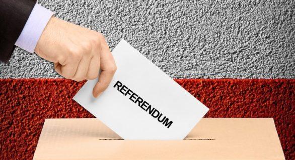 """PLDM condamnă decizia CEC de a respinge înregistrarea grupului de inițiativă pentru referendumul """"nu-mixt"""""""