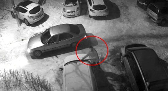 (VIDEO) Căutat pentru furt! Dacă îl recunoști, anunță poliția imediat