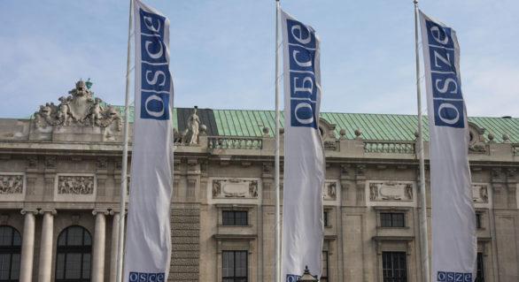 """Consiliul Permanent al OSCE salută decizia de a înregistra autovehiculele transnistrene cu """"plăcuțe neutre"""" în Republica Moldova"""