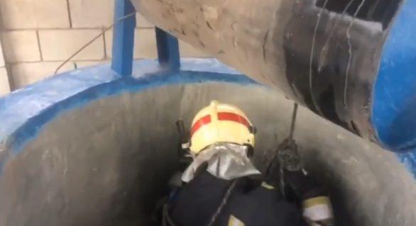 """(VIDEO) Misiune neobișnuită pentru pompierii din sectorul Botanica al capitalei. Au intervenit pentru salvarea lui """"Antoșa"""""""