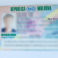 Un moldovean a circulat în baza unui permis de conducere fals, timp de 16 ani