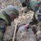 Bombă de aviație de 100 kg, descoperită la Leova, distrusă de geniștii Armatei Naționale