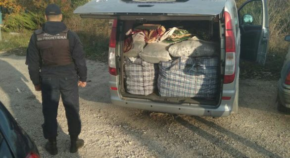 Un lot de plante și material semincer, urma să ajungă ilegal în Ucraina