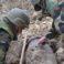 Bombă de aviație de 100 kg, din perioada celui de-al doilea Război Mondial, depistată la Măgdăcești